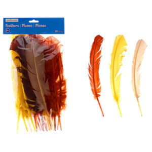 12 Packs: 20 ct. (240 total) Feather Turkey Quill by Creatology
