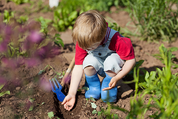 Toddler-Friendly Gardening