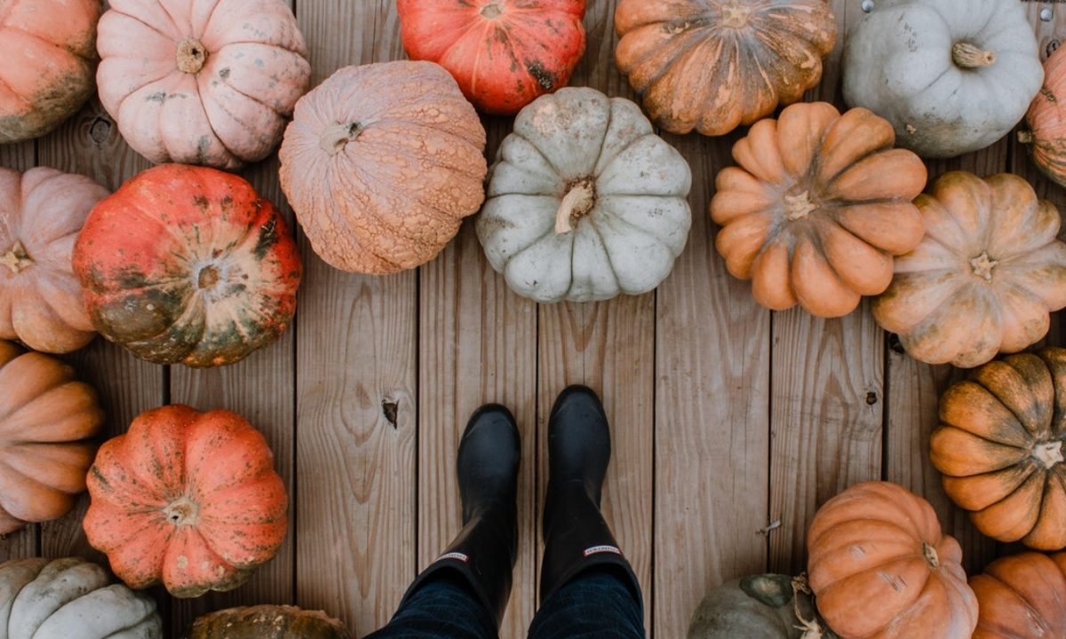 5 Fall Baby Shower Ideas to Celebrate Your Little Pumpkin