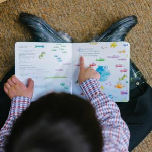 30 Best Board Books for Babies