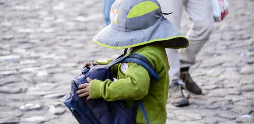 It may not seem like it, but a backpack is a must-have item for toddlers. While they may not be off to school full-time just yet and they certainly don't need to carry a bunch of items, a toddler backpack…