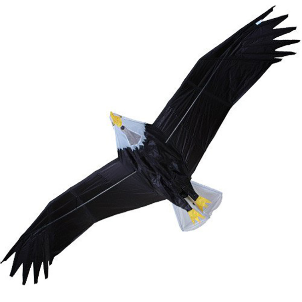 Premier RC Eagle Kite