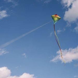 The 10 Best Kites for Kids in 2019