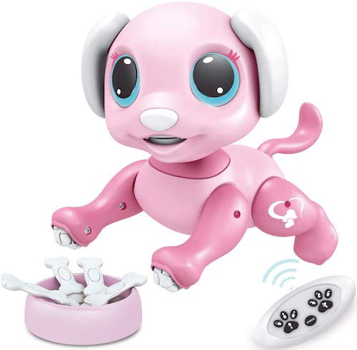 BIRANCO 2019 Smart Puppy with STEM Programmable Actions