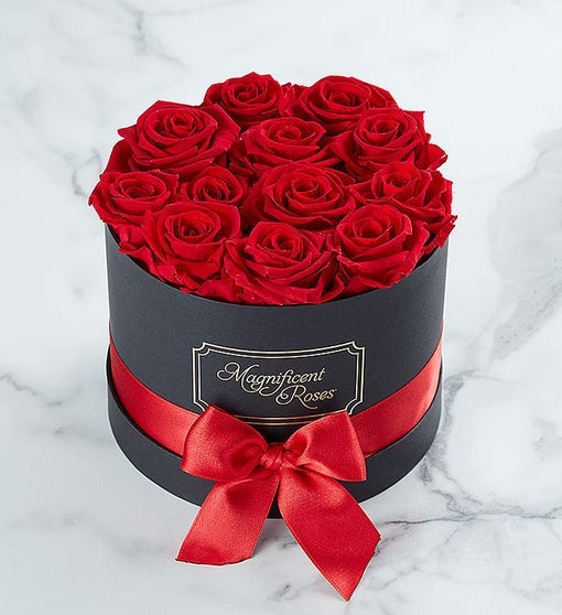 Magnificent Roses from 1-800-Flowers