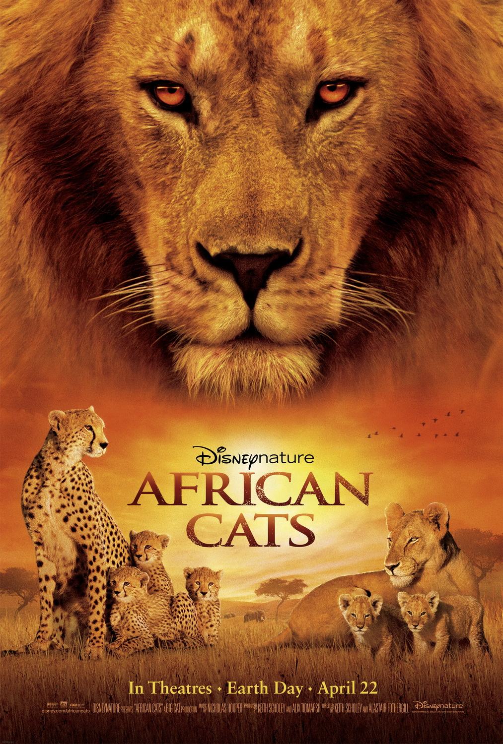 "Disneynature Brings ""African Cats"" to the Big Screen on Earth Day"