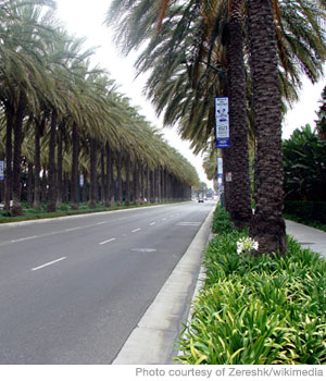 Best Cities 2010: Anaheim, CA