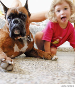 Kids and Dogs: Safety Tips