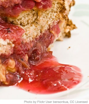 Pan-Fried Peanut Butter Jelly Sandwich for Picky Eaters