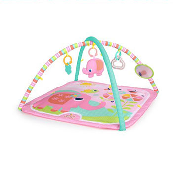 Bright Starts Fanciful Flowers Activity Gym
