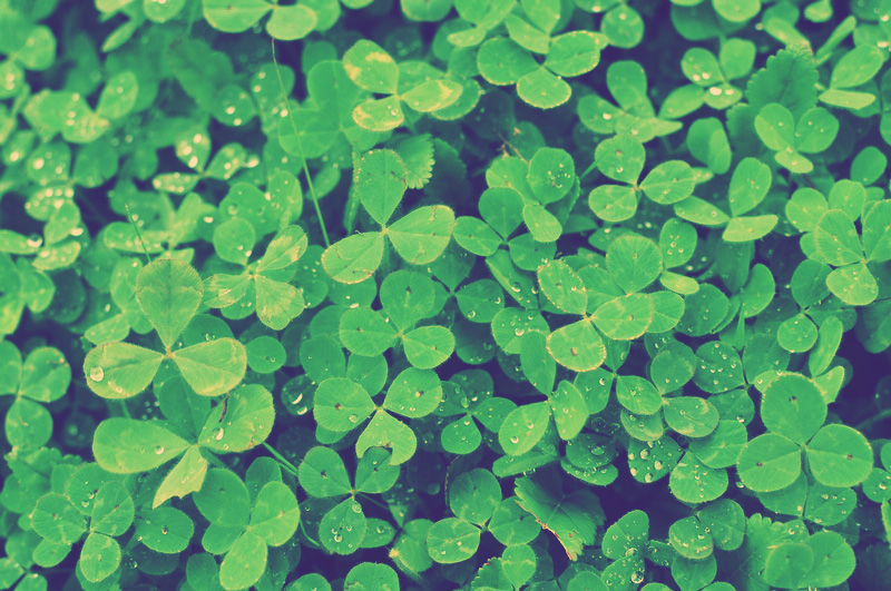 4 Fun Facts About St. Patrick's Day History