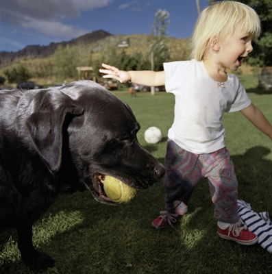 Kids and Pets: A Safety Guide